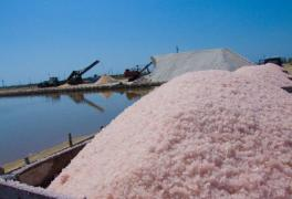 Crimean sea pink SALT wholesale and retail
