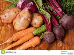 Delivery good vegetables at home. Shipping to Tjumen for free